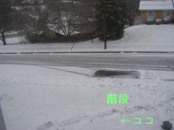 Snow_22jan07_001